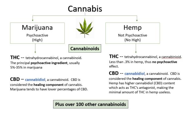 cannabinoids cannabidiol cbd thc hemp marijuana cannabis